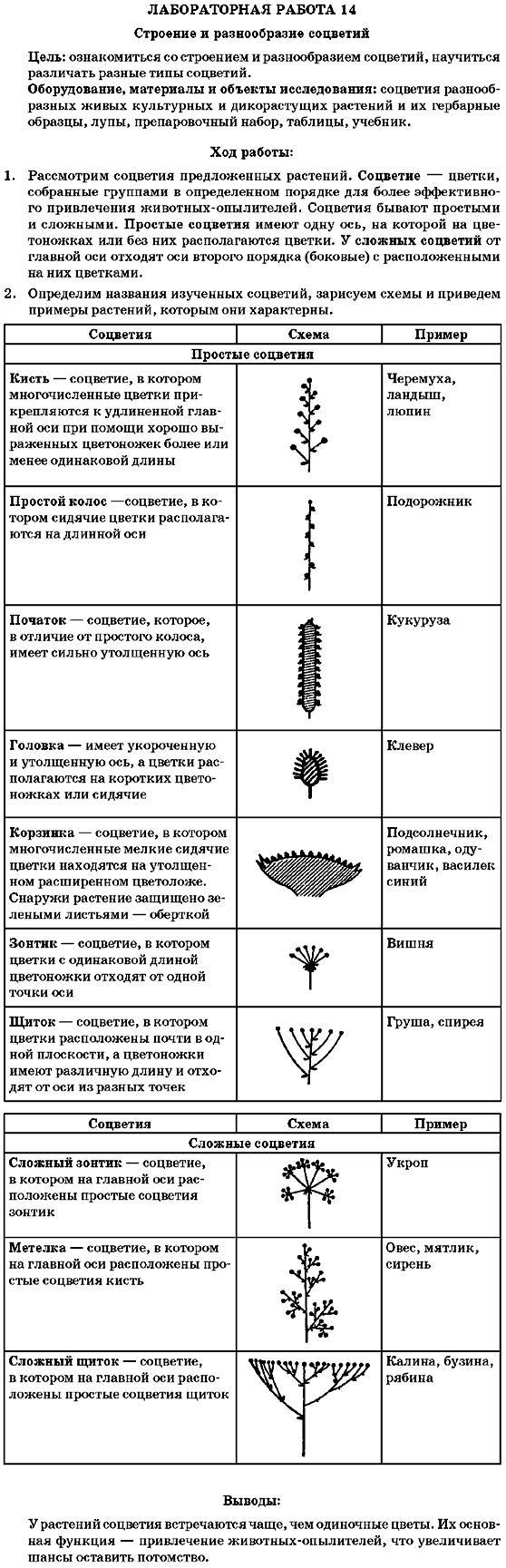 Решебник Лабораторной Работы По Биологии 7 Класс