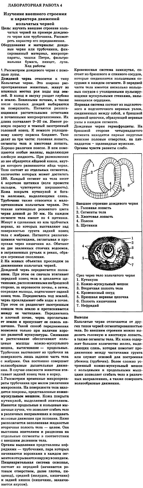 Решебник Лабораторная Работа № 4 По Биологии 8 Класс Камлюк