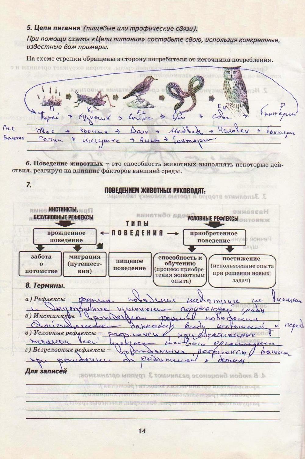 Гдз По Біології 8 Клас
