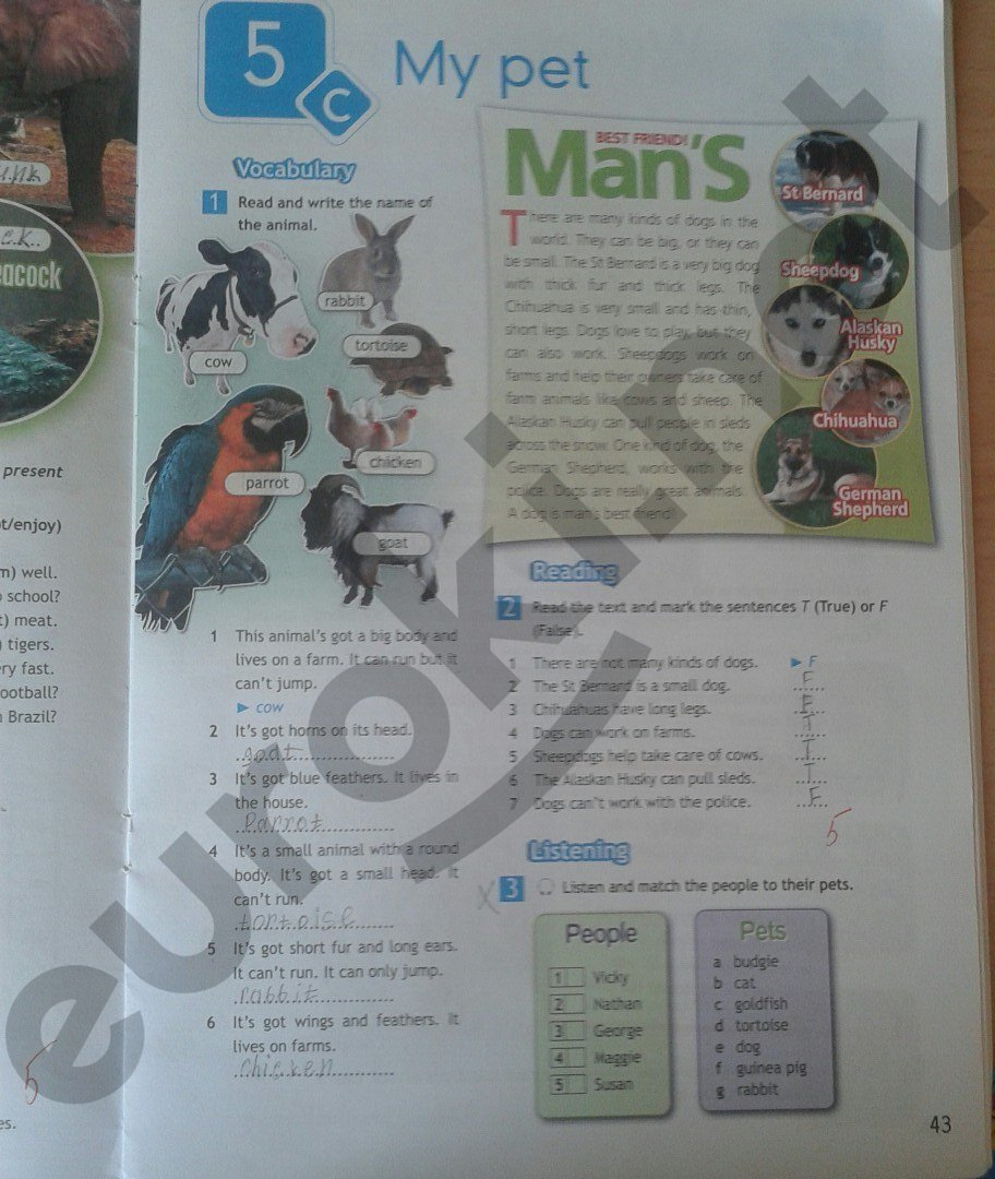ваулина гдз к класс учебнику 5 английского