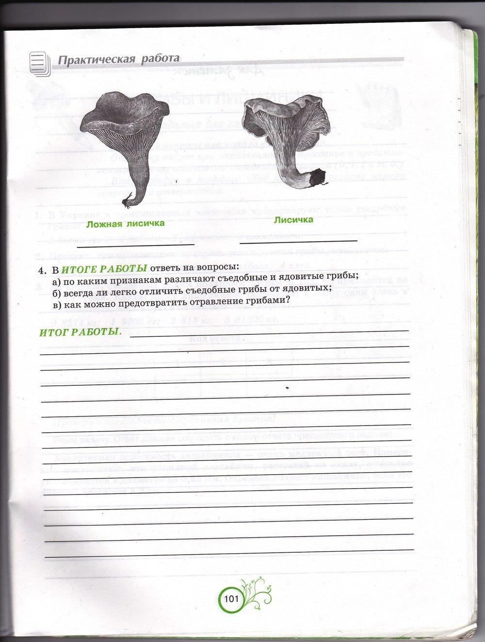 Гдз андерсон биология зошит