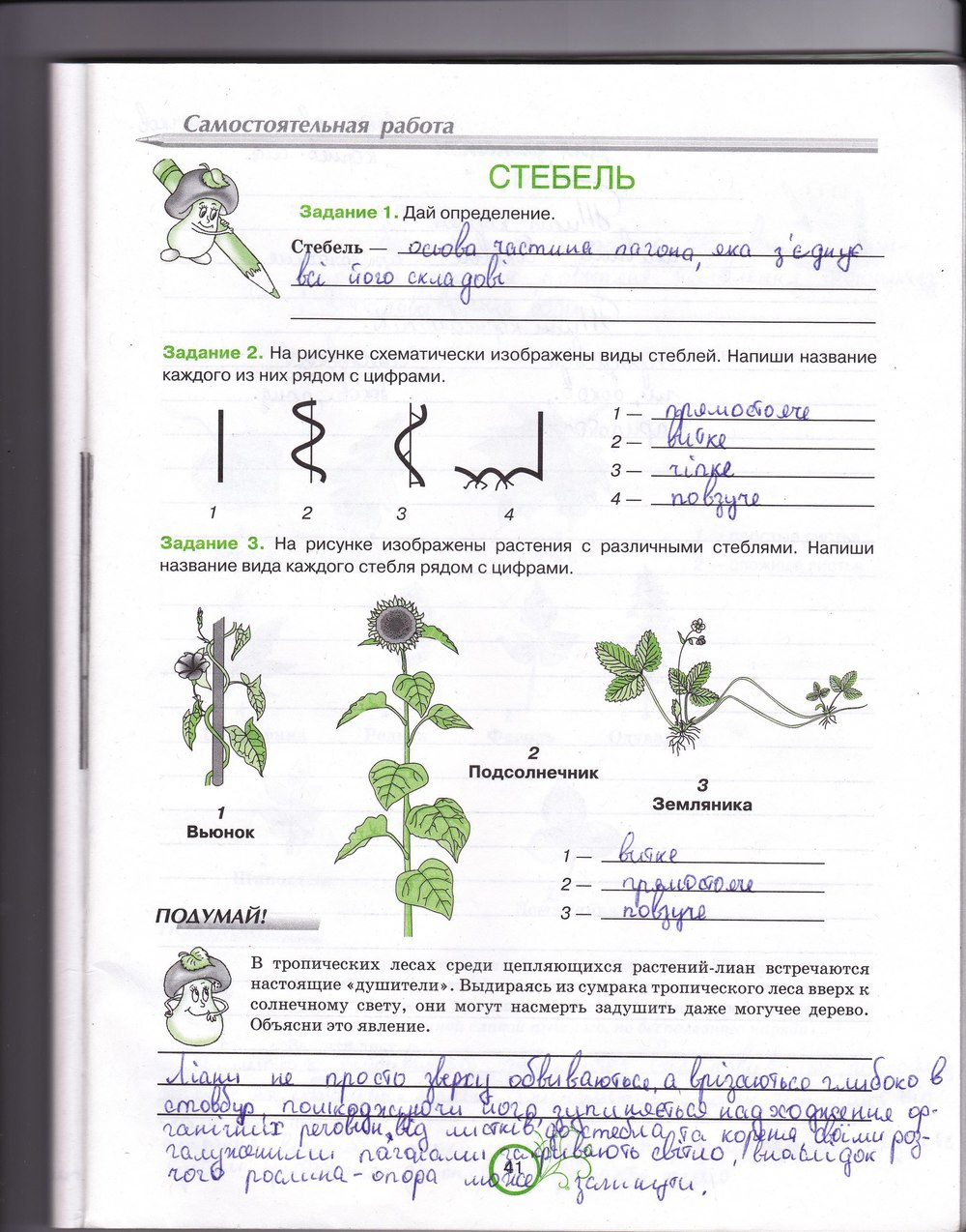 Рабочая класс тетрадь 6 андерсон гдз биология