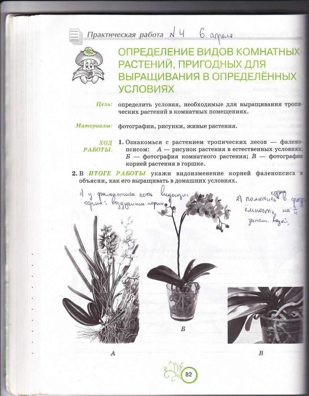 гдз по робочому зошиті з біології 6 клас