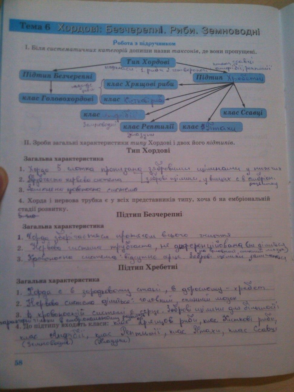 6 біологія князева зошит клас гдз