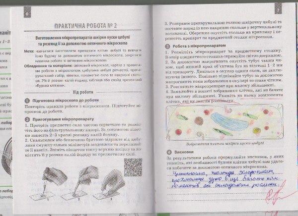 6 клас біології з робочого до зошита гдз