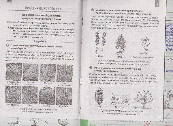 Гдз биология к. 6 м. задорожний класса