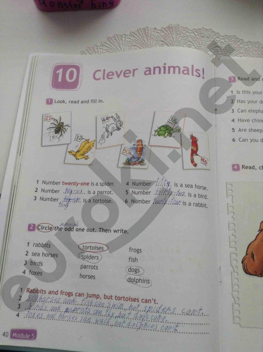 Английский язык 3 класс быкова дули поспелова рабочая тетрадь гдз