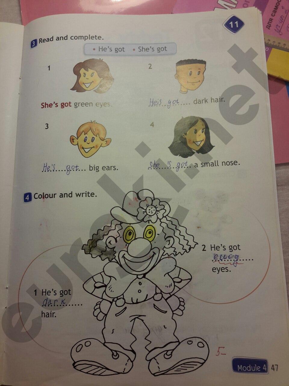 Как сделать домашку по английскому 2 класс