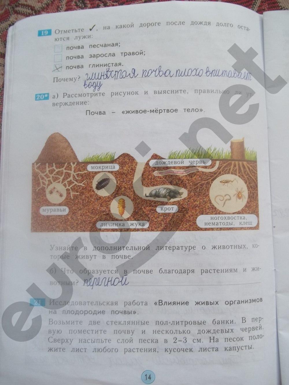 Гдз 2 Класс Рабочая Тетрадь Дмитриева
