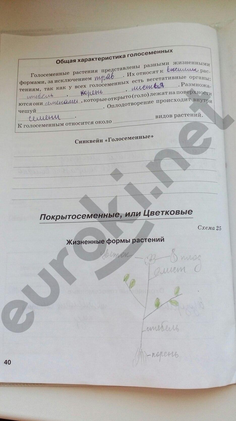 Бодрова рабочая 2018 по решебник тетрадь класс биологии 5