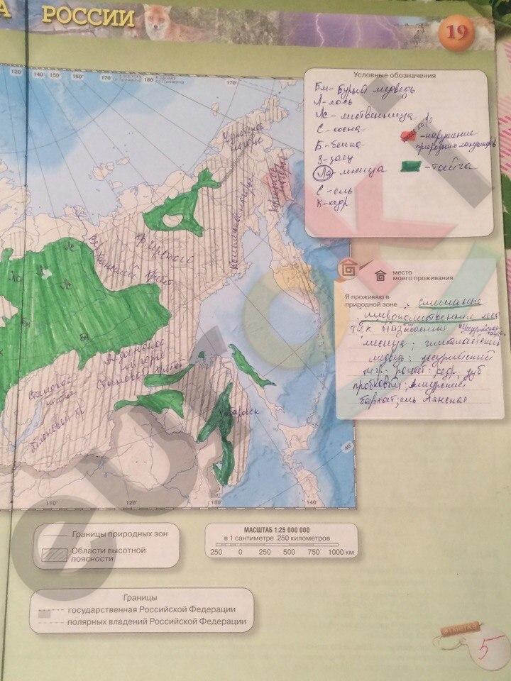 Гдз 8 класс контурные карты просвещение издательство