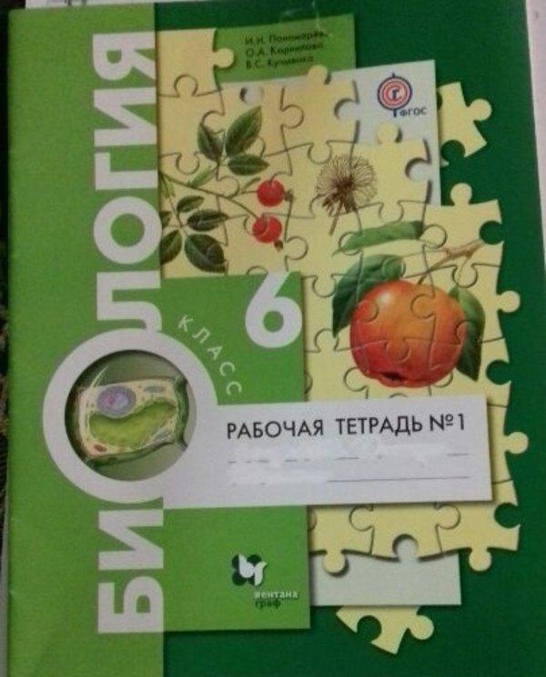 Рабочая тетрадь по биологии 6 класс часть 1 Пономарева ФГОС